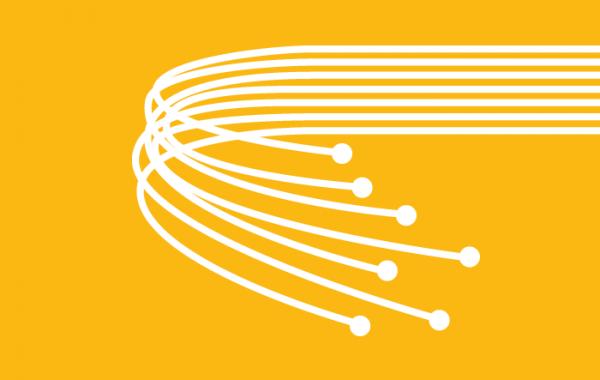 Fibre Networks